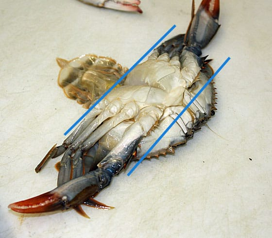 The underside of a soft shell crab with an illustration of where it needs to be cut.