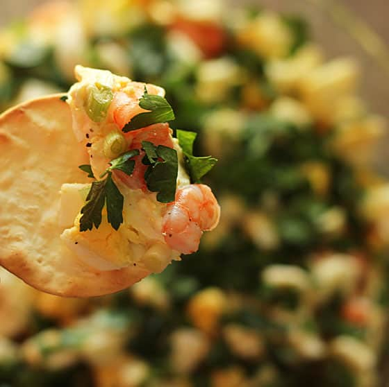 Closeup view of a round cracker with shrimp dip on half of it.