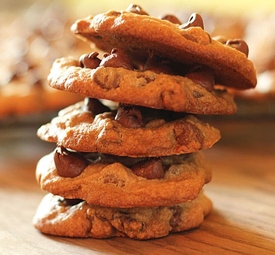 A closeup of 5 stacked chocolate chip cookies.