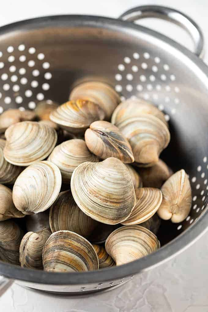3 dozen little neck clams in a stainless steel colander.
