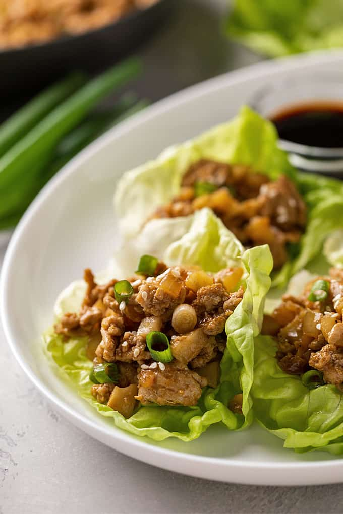 A closeup of a chicken lettuce wrap on a white plate
