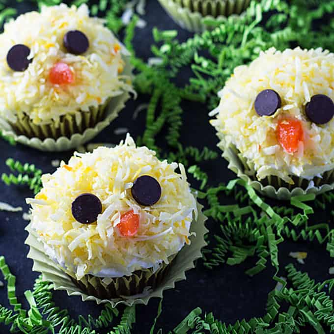 Closeup view of three cupcakes decorated to resemble yellow baby chicken faces.
