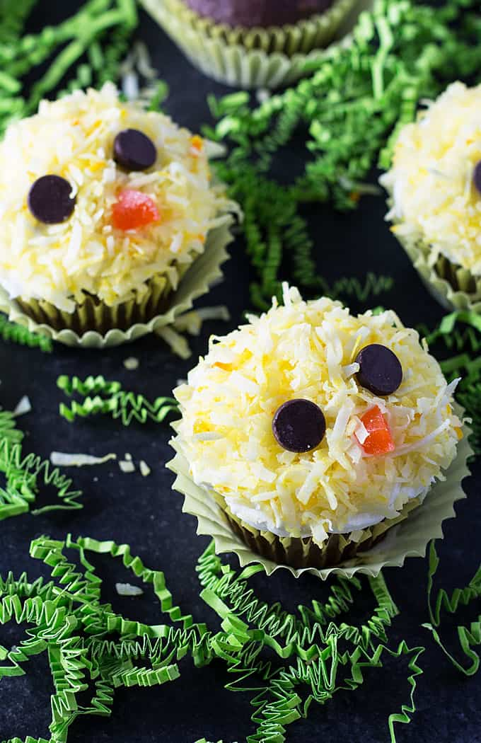 Overhead view of cupcakes that are decorated to resemble baby chicken faces.
