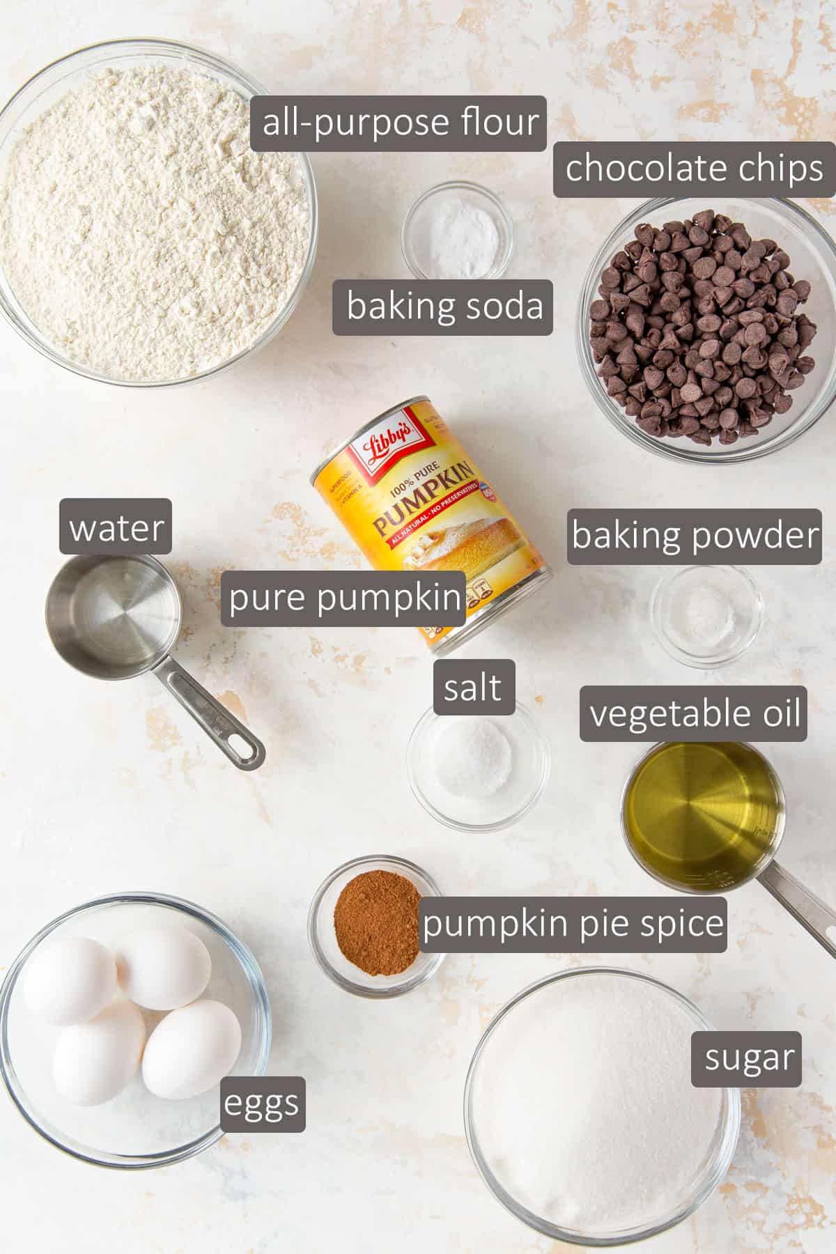 Overhead view of ingredients needed for pumpkin chocolate chip bread.
