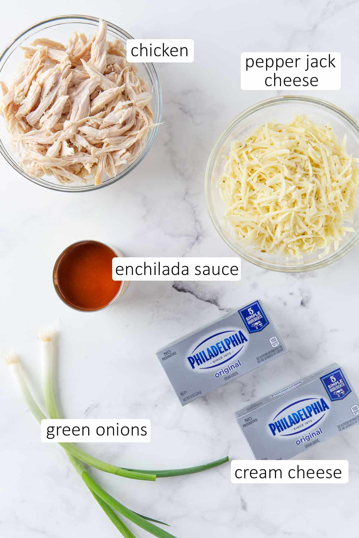 Overhead view of ingredients for crock pot chicken enchilada dip.