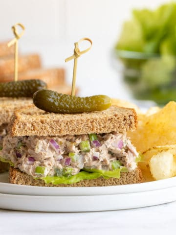 Front view of a tuna salad sandwich on a plate with chips.